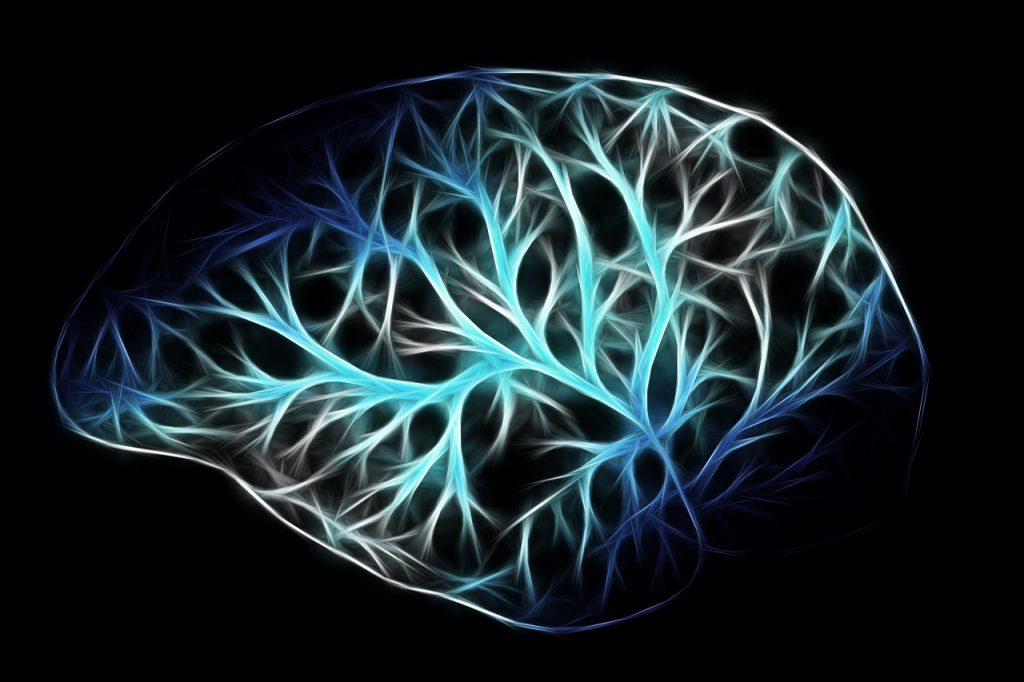 Scientists find there is something universal about what occurs in the brain when it processes stories